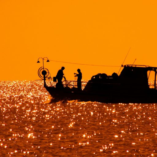 backlit-beach-boat-358423